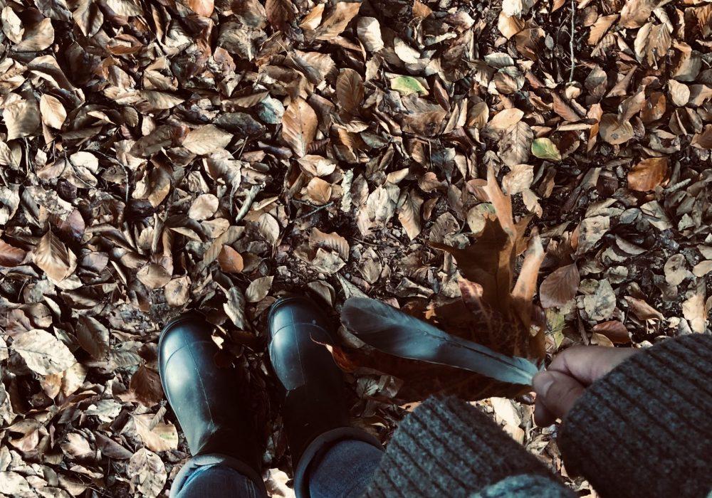 leneth-witte-spiritual-feminist-wild-woman-feathers-autumn-leaves-jumper